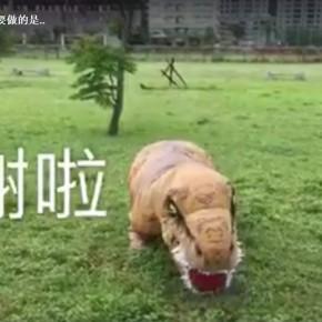 Wan-An Dinosaur Apologizes